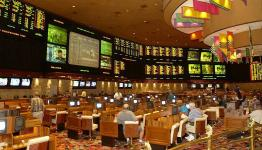 Online Sports Bettors don't turn to Online Casinos during absence of sports: Research